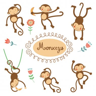 Cute funny monkeys collection