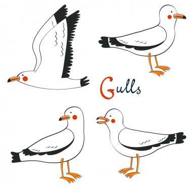 Hand drawn seagulls collection.