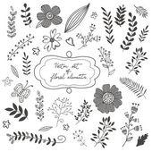 Elegantní kolekce s květy listí a větvičky
