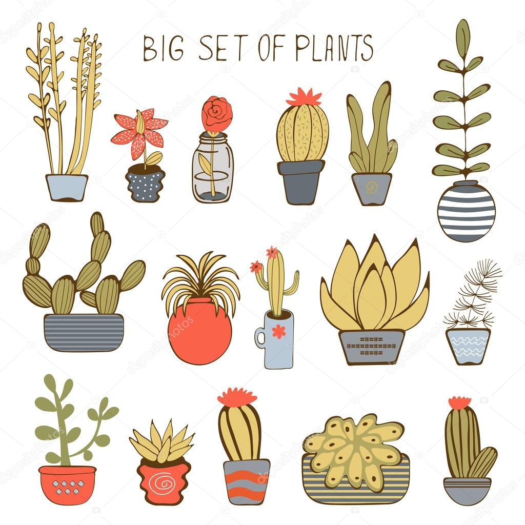 Big colorful set of hand drawn plants