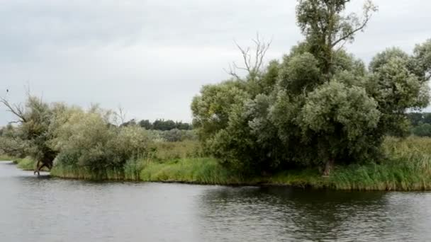 Havel River. typical landscape with meadows and willow tries. Havelland region. (Germany)