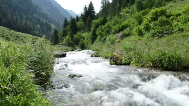 Zillertal Alps stream water though forest and mountains. Hohe Tauern nation park.