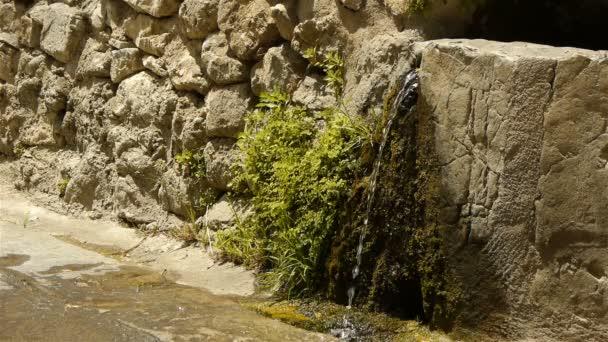 historische Mauer und reines Wasser bei st Guilhem le Desert, Cevennen