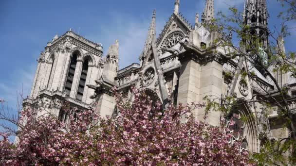 Notre Dame during spring