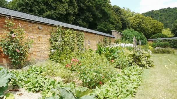 Rostliny na starý zděný botanická zahrada