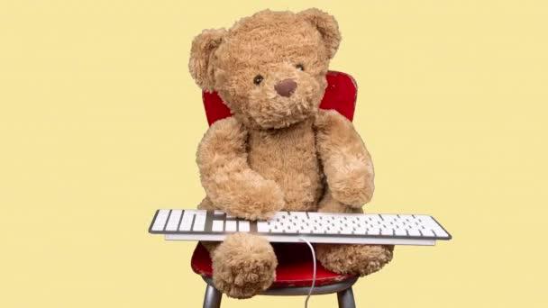 Teddy maci gépelés billentyűzeten