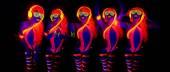 Szexi neon uv fény táncos