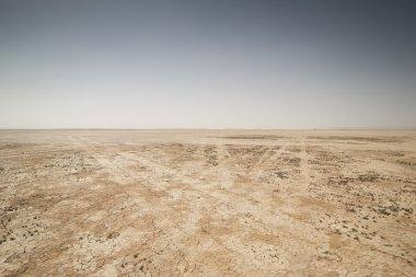 amazing dry lake