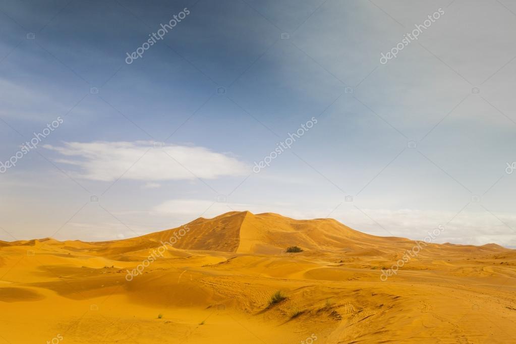 sand dunes in merzouga