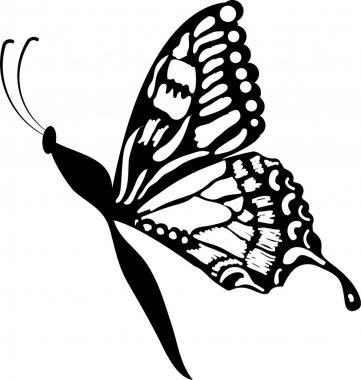 Black a white of butterfly of tattoo