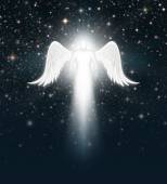 Angel in the Night Sky