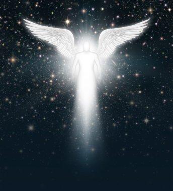 Angel in the Night Sky