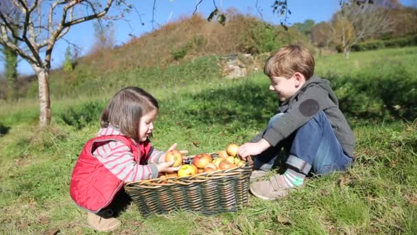 Children laughing and putting apples inside of basket