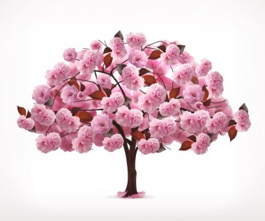 Spring pink tree icon