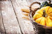 Fotografia autunno natura morta con zucche