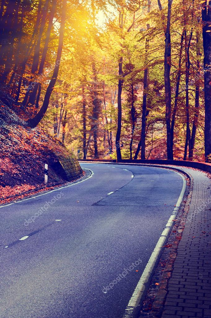 Autumn landscape with curvy road
