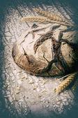 Fotografie Frisch gebackenes Brot Laib