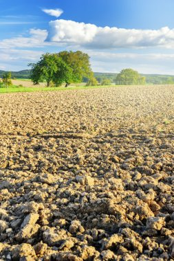 Agricultural landscape with ploughed field