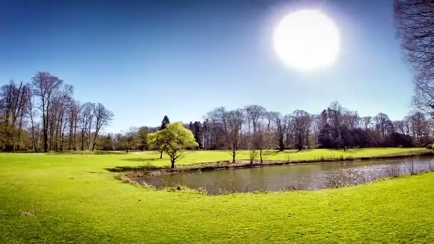 Zelený trávník s rybníkem