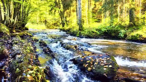 krajina s lesní potok