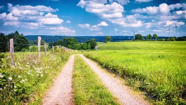 Landstraße an Sommertagen