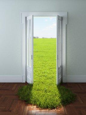Door with bright green grass