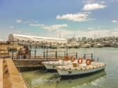 Fotografia Mattina di sole presso il porto di Punta del Este