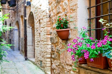 Beautiful street decoration with flowers in medieval town Spello