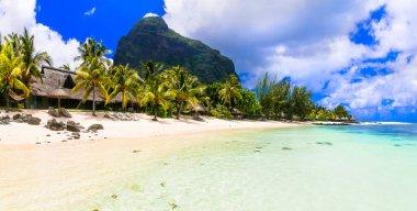 """Картина, постер, плакат, фотообои """"остров мечты. тропический рай. лучшие пляжи острова маврикий, роскошные курорты ле-морна природа"""", артикул 482296432"""