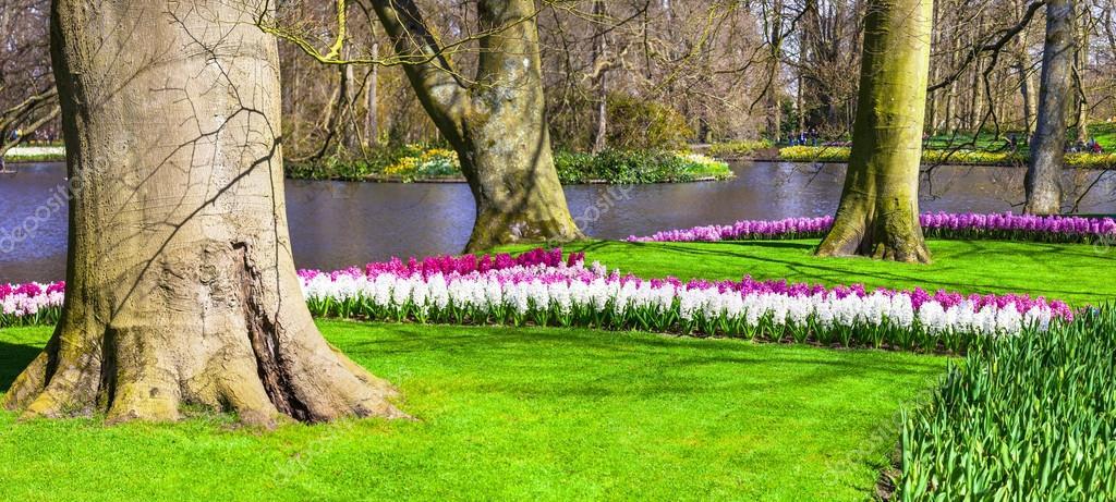 Beautiful floral Keukenhof park in Holland