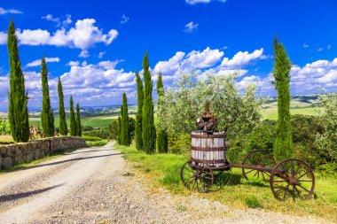 Traditional scenery of Tuscany stock vector