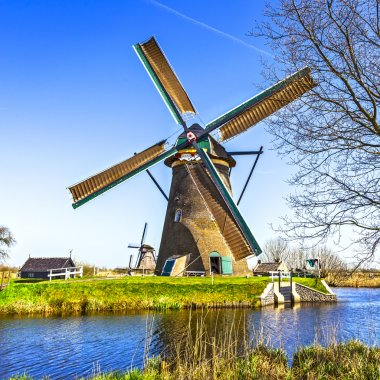 Traditional Holland scenery - windmills in Kinderdijk