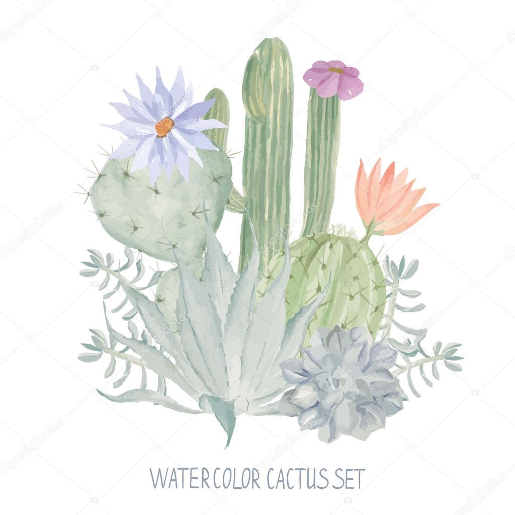 Impression Textile Papier Peint Aquarelle Modèle De Cactus Image