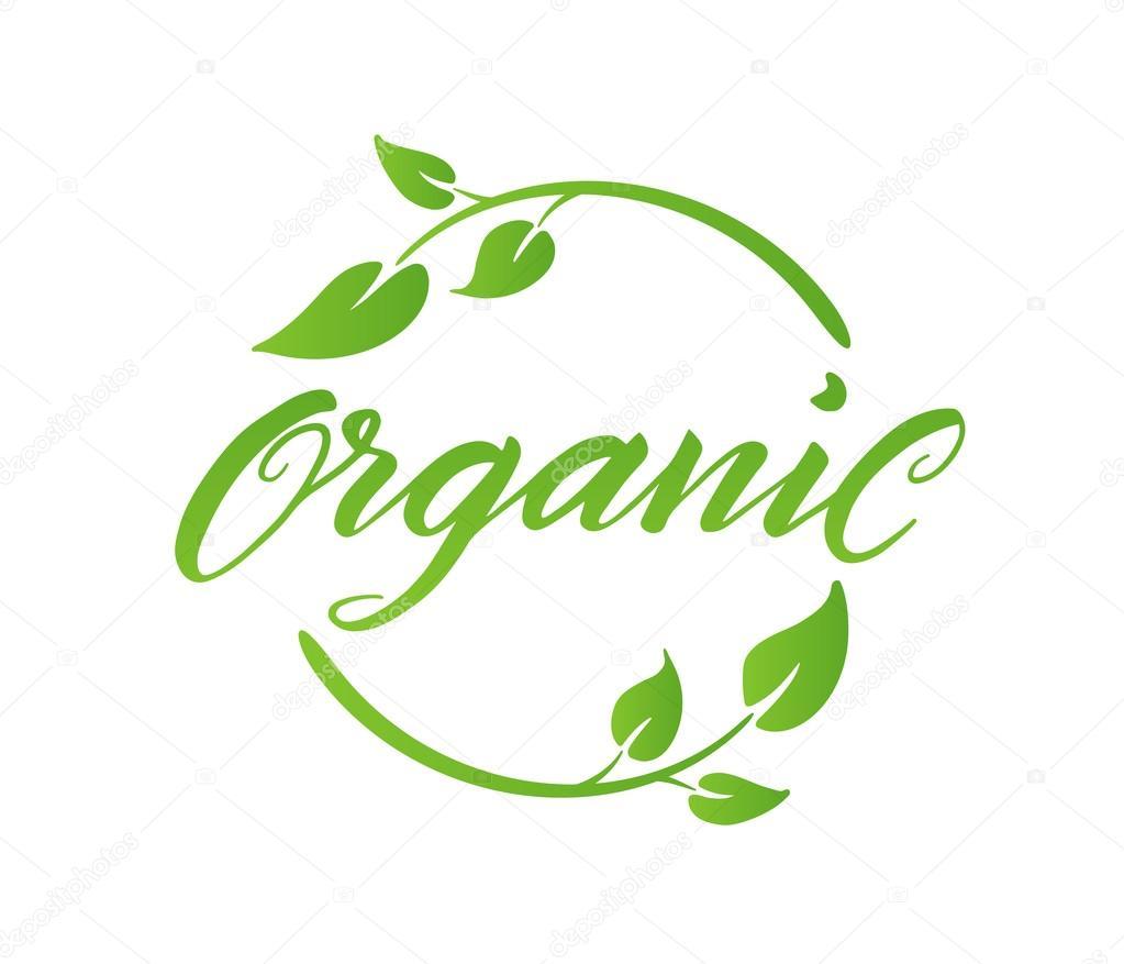 Letras de cepillo orgánico. Etiqueta, plantilla de logotipo ...