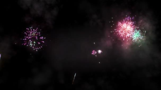 Barevný ohňostroj vybuchující na noční obloze