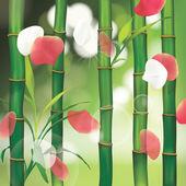 lázně pozadí s bambusem