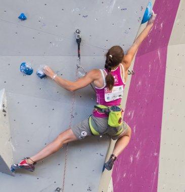 Climbing World Championship