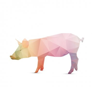 Abstract pig