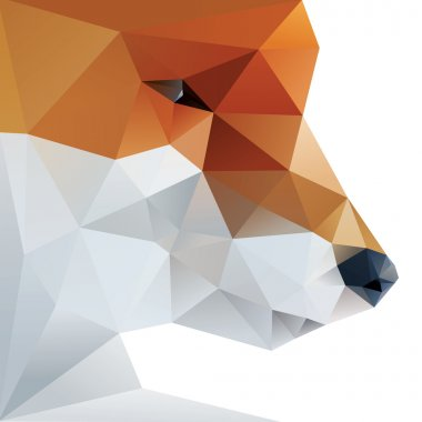 Fox abstract isolated