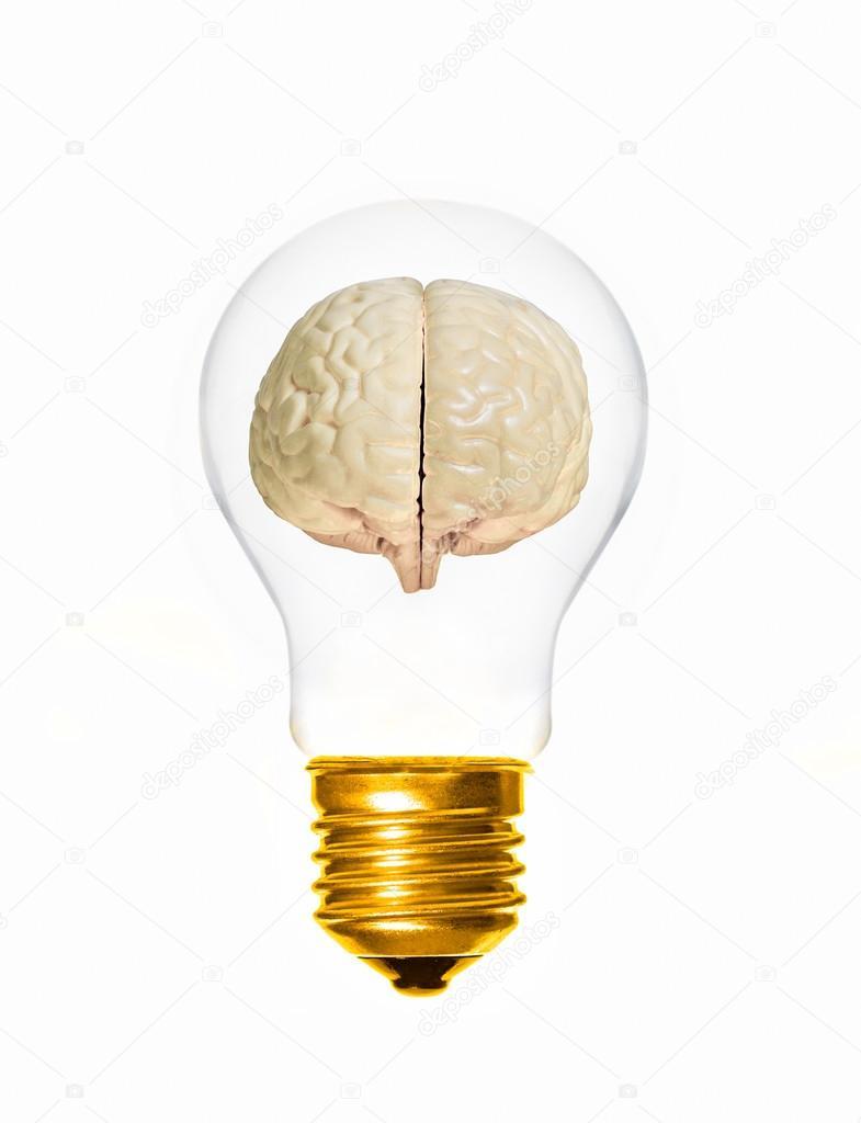 Brain Light Bulb U2014 Stock Photo