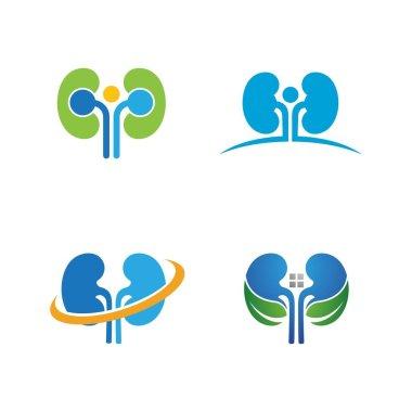 Kidney vector illusrtation design logo template icon