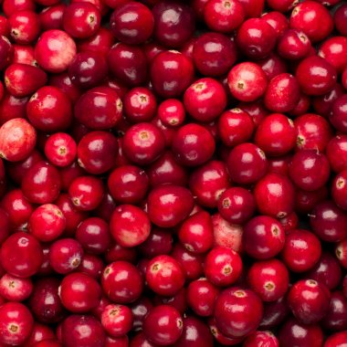 Fresh red ripe cranberries background