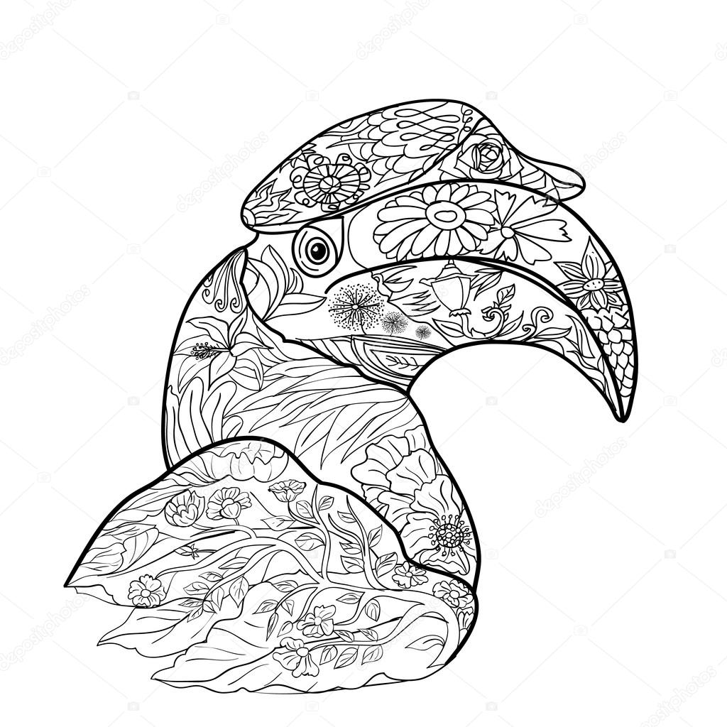 Línea Arte Para Colorear Pájaro Cálao Grande Sobre Fondo Blanco ...