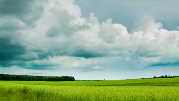Green field with overcast clouds time lapse