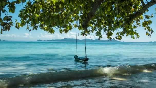 Zelený strom s lonely swing a moře