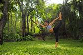 Fiatal nő csinál jóga gyakorlatok, a kert park