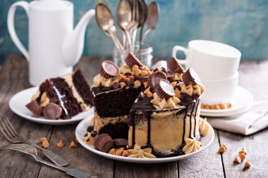 Chocolate peanut butter cake with frosting
