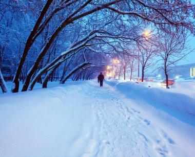 Night Winter City Scene