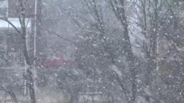 sníh v západní Pensylvánii sousedství