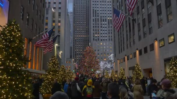 rockefeller christmas tree in manhattan stock video